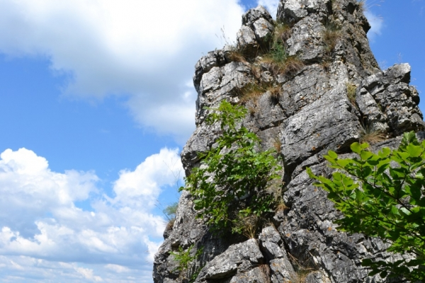 pilis-tura-halal-helynevek-ketnapos-satorozas-bivak-fuggoagy-barlang-feketeko-kilatas8D78E8D8-7D90-4A22-A73A-2A8B645920D4.jpg