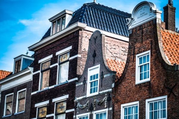 hollandia-belgium-02A98E0B9B-2644-33E7-F191-B32A6170C4C8.jpg