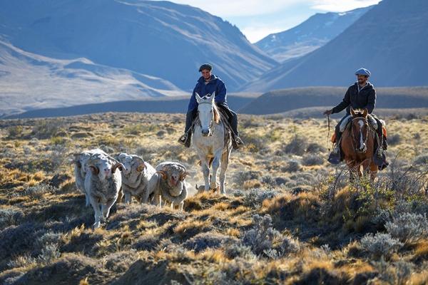 patagonia-kalandtura-16BD954611-5F73-F2A1-53BB-BA40A0810C99.jpg