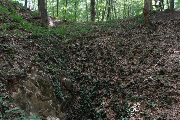 naszaly-09-szinlo-barlangB2F4BFA4-DD61-48E5-5854-151B33759087.jpg