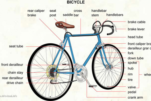 bicycle4EAE72E7-61C3-E3D3-0DEF-4C4DBD20B119.jpg