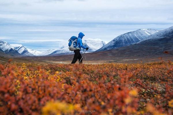 trekking-sved-lappfoldon-kebnekaise-2104m-megmaszasa-kungsleden-31A97E98F9-7B2A-C91A-66B1-8AEC92D09BC6.jpg