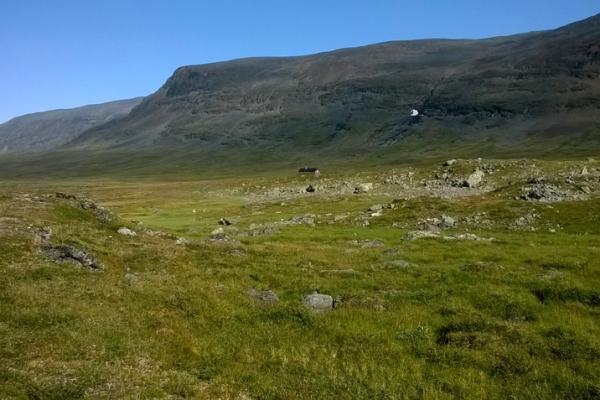 trekking-sved-lappfoldon-kebnekaise-2104m-megmaszasa-kungsleden-6726CB054-C863-EC01-4D20-E285B52D4B8B.jpg