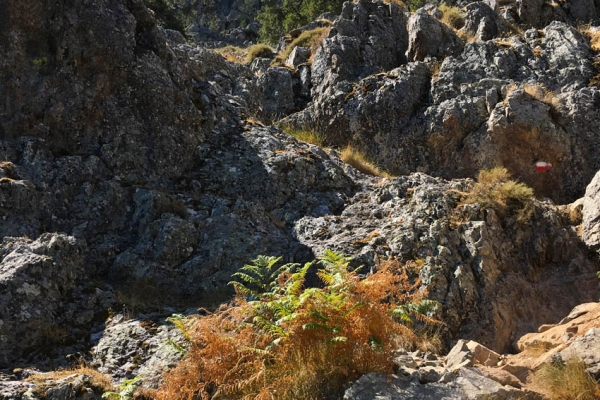 gr20-korzika-europa-legnehezebb-trekking-tura-8600C71C16-0D04-9E2F-D306-6AC05C9B05F1.jpg