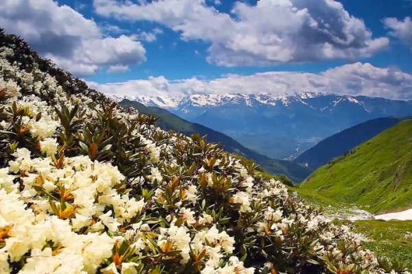 gruzia-kaukazus-tura-trekking-245D1355C1-A634-32AD-0073-8BAFA432244D.jpg