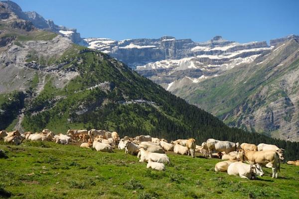 pireneusok-magashegyi-gyalogtura-monte-perdido-996AB8175-EE40-1BD5-E695-9F03E540C60F.jpg