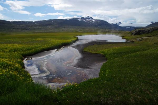 izland-hornstrandir-trekking-kaland-tura-nomad-furufjordur288676155-6C8D-73E6-153C-96FFFD16AD9F.png