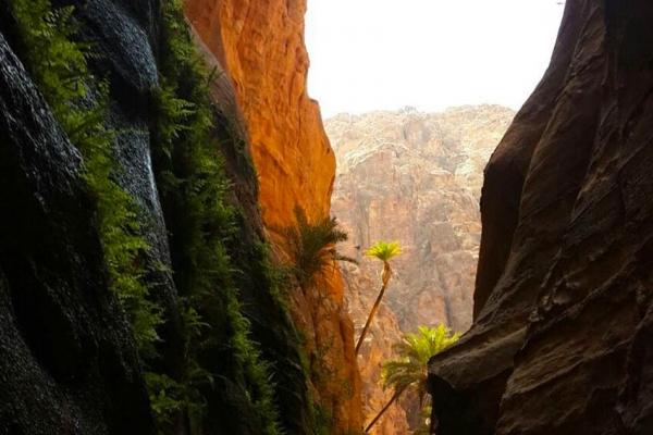 jordania-kaland-tura-kanyoning-786E53734-029E-83E0-BE6E-4FAB22F165D9.jpg