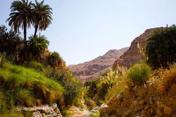 jordania-kaland-tura-kanyoning-8574DB923D-1220-48E5-A978-02A4ADB77435.jpg